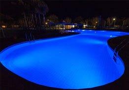 Swimming Pool Landscaping Brisbane
